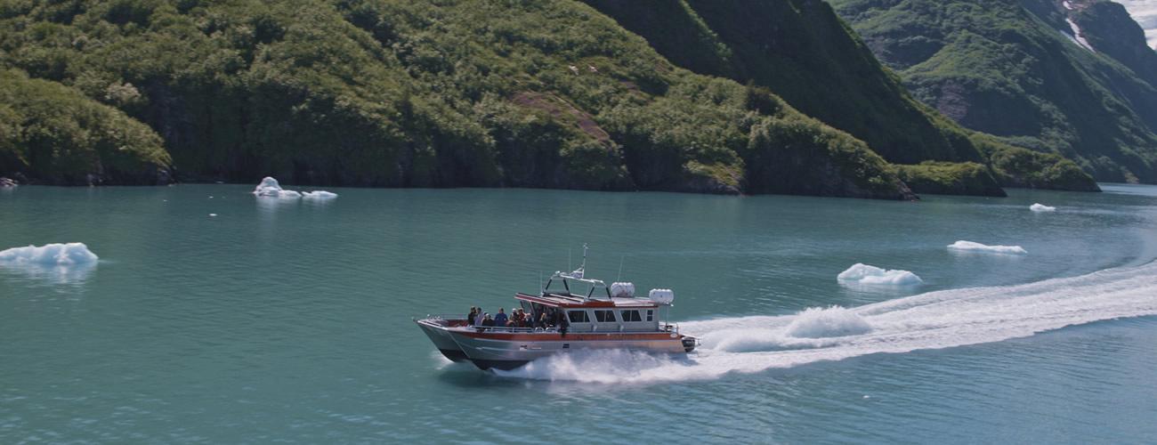 lazy-otter-cruise